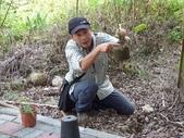 4-4  雪見 - 環境教育及工作假期:104-0430-2 泰安國小環境教育--種樹 (18).jpg