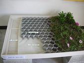 1-1  綠屋頂 -- 屋頂綠化:2 綠屋頂材料007 - 薄層綠化基盤材