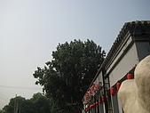 2010604天壇頤和園:IMG_1655.JPG