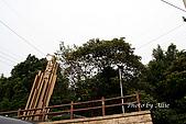 情人湖、大武崙、外木山:img_1679jpgs