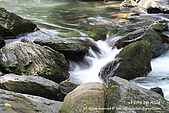 溪瀑拍攝練習。內洞:20070707_內洞_034C