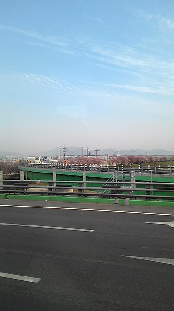 P_20150410_083945_LL.jpg - 釜山 + 尚慶道 自由行之流浪趣 - Day1