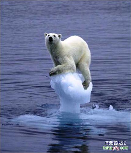 上昇 原因 海面