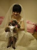 雨*結婚:P1120190.JPG