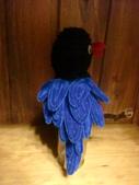 ~台灣藍鵲~:CIMG6744.JPG