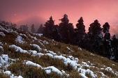 合歡2月雪:08-02-19-合歡山-051a.jpg