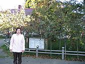 福壽山:照片123 008.jpg