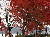 97年日本東北-盛岡手工村:IMG_0361.JPG