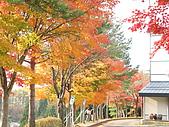 97年日本東北-盛岡手工村:IMG_0363.JPG