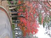 97年日本東北-盛岡手工村:IMG_0367.JPG