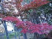 97年日本東北-盛岡手工村:IMG_0375.JPG