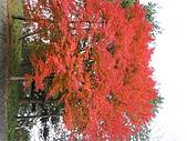 97年日本東北-盛岡手工村:IMG_0380.JPG