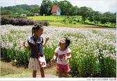 2012 Sep 大溪花海農場:大溪26