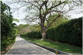 2013 Bangkok & Hunhin:BKK DAY5-67