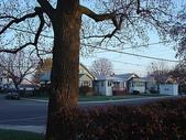 New Homestay in Toronto:DSC08588_resize.JPG