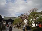 2006 Japan:DSC04989_resize.jpg