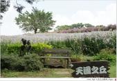 2012 Sep 大溪花海農場:大溪28