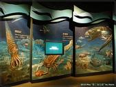 2010 墾丁海生館:海生館22