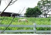 2012 Sep 大溪花海農場:大溪21