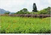 2012 Sep 大溪花海農場:大溪22