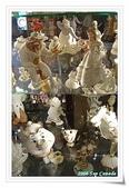 2009 美麗的櫥窗:NIAGARA FALLS 3