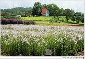 2012 Sep 大溪花海農場:大溪25