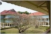 2013 Bangkok & Hunhin:BKK DAY5-107