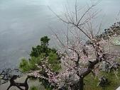 2006 Japan:DSC04915_resize.jpg