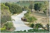 2013 Bangkok & Hunhin:BKK DAY4-59