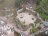 2006 Japan:DSC04757_resize.jpg