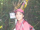 金平山、金牌山、牌子山 ~「拿金牌之旅」~:F23_20110807092342187