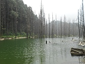 2011-0916~18水漾森林:DSCN0115
