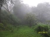 2013-0520我愛開心農場。。。一年回顧:100_6887.jpg