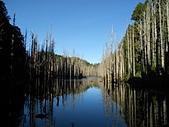 2011-0916~18水漾森林:DSCN0195