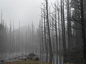 2011-0916~18水漾森林:DSCN0103