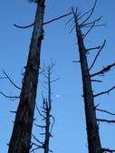 2011-0916~18水漾森林:DSCN0183
