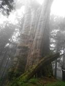 2011-0916~18水漾森林:DSCN0143