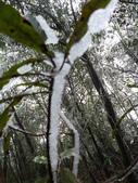2012-1231蘭陽第一高山阿玉山:P1150685.jpg