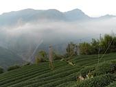 2011-0916~18水漾森林:DSCN0079