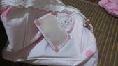 浪漫包包DIY:IMG_0100.JPG