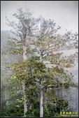 台北植物園‧腊葉館:IMG_20.jpg