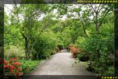 棲蘭國家森林遊樂區:IMG_04.jpg