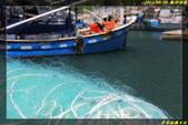 龍洞漁港:IMG_09.jpg