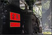 台灣總督府博物館(國立台灣博物館):IMG_21.jpg