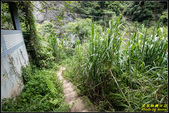 蓬萊瀑布:IMG_11.jpg