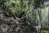 圓潭自然生態園區:IMG_13.jpg