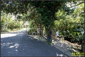 墾丁森林遊樂區‧地質與生態奇景:IMG_08.jpg