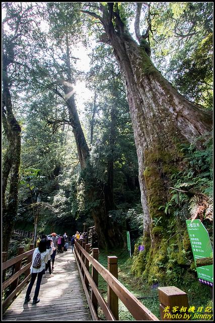 IMG_28.jpg - 拉拉山自然保護區