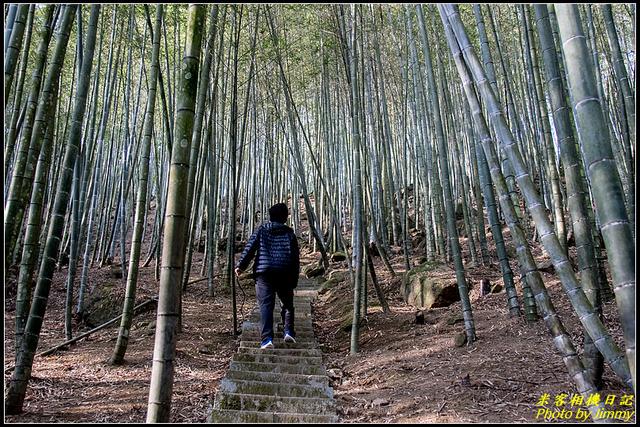 長源圳生態步道、孟宗竹林古戰場:IMG_09.jpg