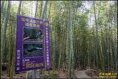 長源圳生態步道、孟宗竹林古戰場:IMG_12.jpg